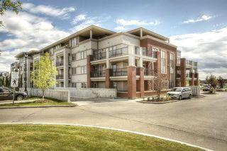 Photo 24: 408 4450 MCCRAE Avenue in Edmonton: Zone 27 Condo for sale : MLS®# E4169828