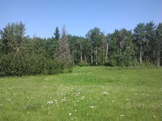 Photo 6: 16 51222 RGE RD 260 Road: Rural Parkland County Rural Land/Vacant Lot for sale : MLS®# E4191798