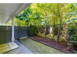 "Photo 29: 55 14955 60 Avenue in Surrey: Sullivan Station Townhouse for sale in ""Cambridge Park"" : MLS®# R2480611"