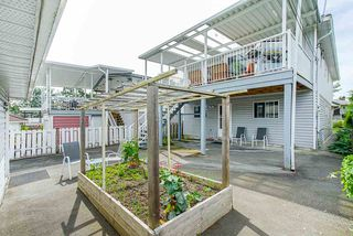 Photo 34: 3373 E 2ND Avenue in Vancouver: Renfrew VE House for sale (Vancouver East)  : MLS®# R2481894