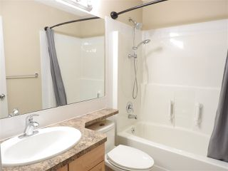 Photo 23:  in Edmonton: Zone 55 House for sale : MLS®# E4214288