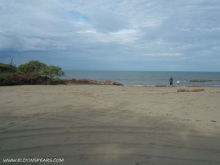 Photo 4: Las Tablas Oceanfront Land