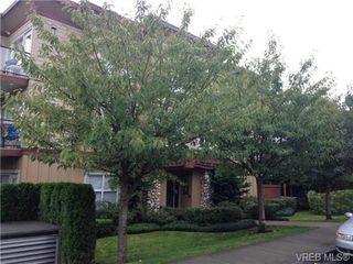 Photo 3: 202 919 Market St in VICTORIA: Vi Hillside Condo for sale (Victoria)  : MLS®# 683540