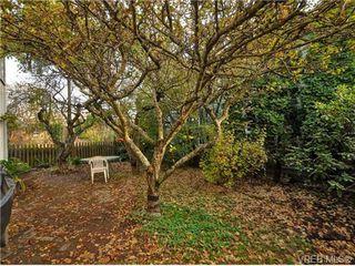 Photo 15: B 1601 Haultain Street in VICTORIA: Vi Oaklands Strata Duplex Unit for sale (Victoria)  : MLS®# 345670