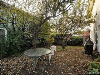 Photo 16: B 1601 Haultain St in VICTORIA: Vi Oaklands Half Duplex for sale (Victoria)  : MLS®# 690016