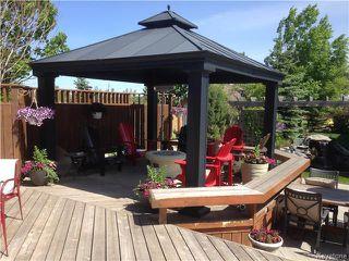 Photo 19: 683 Knowles Avenue in Winnipeg: North Kildonan Residential for sale (North East Winnipeg)  : MLS®# 1612016