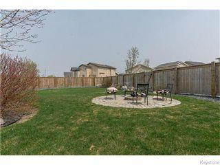 Photo 20: 683 Knowles Avenue in Winnipeg: North Kildonan Residential for sale (North East Winnipeg)  : MLS®# 1612016