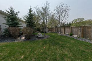 Photo 44: 683 Knowles Avenue in Winnipeg: North Kildonan Residential for sale (North East Winnipeg)  : MLS®# 1612016