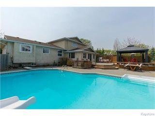 Photo 14: 683 Knowles Avenue in Winnipeg: North Kildonan Residential for sale (North East Winnipeg)  : MLS®# 1612016