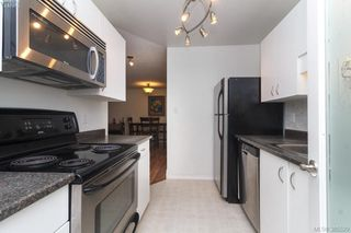Photo 12: 104 3258 Alder Street in VICTORIA: SE Quadra Condo Apartment for sale (Saanich East)  : MLS®# 385529