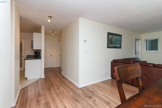 Photo 8: 104 3258 Alder Street in VICTORIA: SE Quadra Condo Apartment for sale (Saanich East)  : MLS®# 385529
