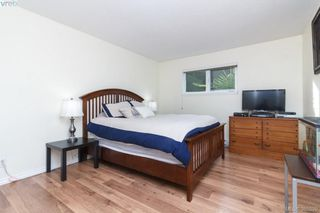 Photo 13: 104 3258 Alder Street in VICTORIA: SE Quadra Condo Apartment for sale (Saanich East)  : MLS®# 385529