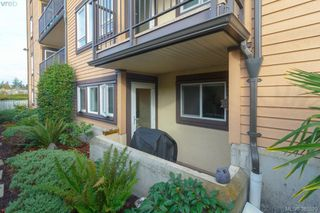 Photo 18: 104 3258 Alder Street in VICTORIA: SE Quadra Condo Apartment for sale (Saanich East)  : MLS®# 385529