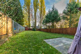 Photo 15: 21224 DEWDNEY TRUNK Road in Maple Ridge: Southwest Maple Ridge House 1/2 Duplex for sale : MLS®# R2322049