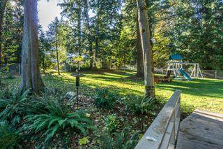 "Photo 50: 2853 138 Street in Surrey: Elgin Chantrell House for sale in ""ELGIN CHANTRELL"" (South Surrey White Rock)  : MLS®# R2329589"