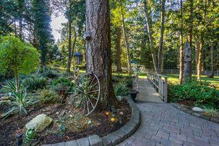 "Photo 48: 2853 138 Street in Surrey: Elgin Chantrell House for sale in ""ELGIN CHANTRELL"" (South Surrey White Rock)  : MLS®# R2329589"
