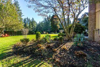 "Photo 34: 2853 138 Street in Surrey: Elgin Chantrell House for sale in ""ELGIN CHANTRELL"" (South Surrey White Rock)  : MLS®# R2329589"