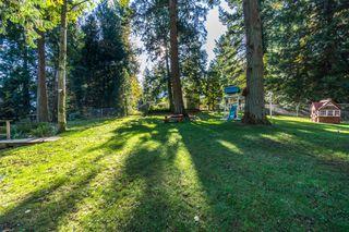 "Photo 52: 2853 138 Street in Surrey: Elgin Chantrell House for sale in ""ELGIN CHANTRELL"" (South Surrey White Rock)  : MLS®# R2329589"