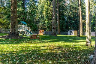 "Photo 53: 2853 138 Street in Surrey: Elgin Chantrell House for sale in ""ELGIN CHANTRELL"" (South Surrey White Rock)  : MLS®# R2329589"