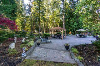 "Photo 38: 2853 138 Street in Surrey: Elgin Chantrell House for sale in ""ELGIN CHANTRELL"" (South Surrey White Rock)  : MLS®# R2329589"
