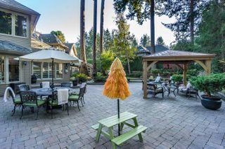 "Photo 47: 2853 138 Street in Surrey: Elgin Chantrell House for sale in ""ELGIN CHANTRELL"" (South Surrey White Rock)  : MLS®# R2329589"