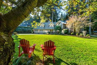 "Photo 58: 2853 138 Street in Surrey: Elgin Chantrell House for sale in ""ELGIN CHANTRELL"" (South Surrey White Rock)  : MLS®# R2329589"