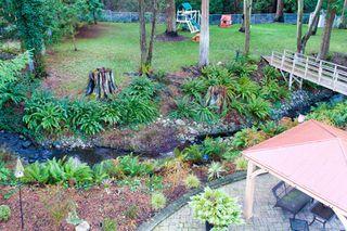 "Photo 59: 2853 138 Street in Surrey: Elgin Chantrell House for sale in ""ELGIN CHANTRELL"" (South Surrey White Rock)  : MLS®# R2329589"