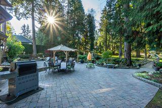"Photo 37: 2853 138 Street in Surrey: Elgin Chantrell House for sale in ""ELGIN CHANTRELL"" (South Surrey White Rock)  : MLS®# R2329589"