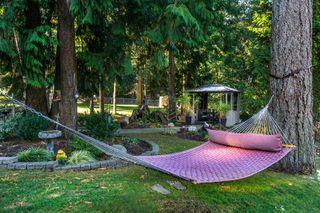 "Photo 54: 2853 138 Street in Surrey: Elgin Chantrell House for sale in ""ELGIN CHANTRELL"" (South Surrey White Rock)  : MLS®# R2329589"