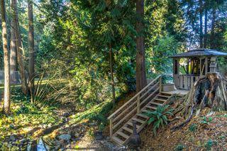 "Photo 49: 2853 138 Street in Surrey: Elgin Chantrell House for sale in ""ELGIN CHANTRELL"" (South Surrey White Rock)  : MLS®# R2329589"
