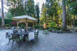 "Photo 41: 2853 138 Street in Surrey: Elgin Chantrell House for sale in ""ELGIN CHANTRELL"" (South Surrey White Rock)  : MLS®# R2329589"
