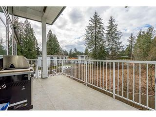 Photo 2: 4 33311 HAWTHORNE Avenue in Abbotsford: Poplar House for sale : MLS®# R2348892