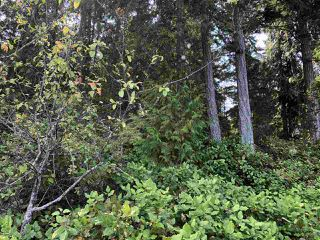 Photo 12: 5441 JERVIS INLET Road in Egmont: Pender Harbour Egmont Land for sale (Sunshine Coast)  : MLS®# R2358172