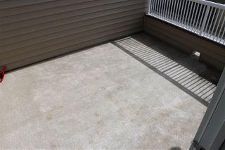 Photo 28: 337 WATT Boulevard in Edmonton: Zone 53 House Half Duplex for sale : MLS®# E4155277