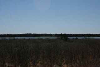 Photo 2: West Sable Road in Little Harbour: 407-Shelburne County Vacant Land for sale (South Shore)  : MLS®# 201911281