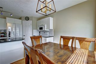 Photo 50: 255 CHAPALINA Place SE in Calgary: Chaparral Detached for sale : MLS®# C4253345