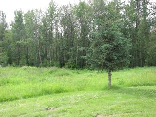 Photo 5: 53516 Highway 765: Rural Lac Ste. Anne County House for sale : MLS®# E4164848