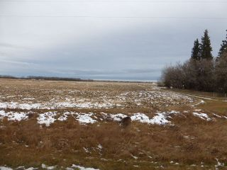 Photo 2: RR 281 HWY 39: Rural Leduc County Rural Land/Vacant Lot for sale : MLS®# E4179482