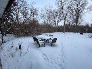 Photo 35: 110 Pine Street: Sherwood Park House for sale : MLS®# E4183662
