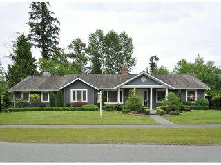 "Photo 1: 5902 KILKEE Drive in Surrey: Sullivan Station House for sale in ""SULLIVAN STATION"" : MLS®# F1415901"
