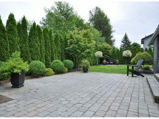 "Photo 16: 5902 KILKEE Drive in Surrey: Sullivan Station House for sale in ""SULLIVAN STATION"" : MLS®# F1415901"