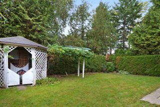 Photo 20: 26596 29B Avenue in Langley: Aldergrove Langley House for sale : MLS®# F1451494