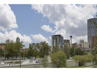Photo 2: 202 414 MEREDITH Road NE in Calgary: Crescent Heights Condo for sale : MLS®# C4031332