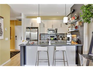 Photo 9: 202 414 MEREDITH Road NE in Calgary: Crescent Heights Condo for sale : MLS®# C4031332