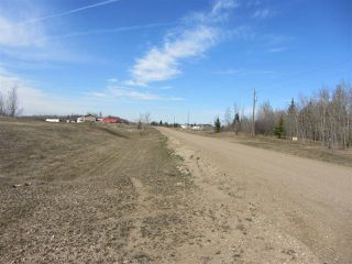 Photo 6: 18 Landing Drive: Rural Sturgeon County House for sale : MLS®# E4015945