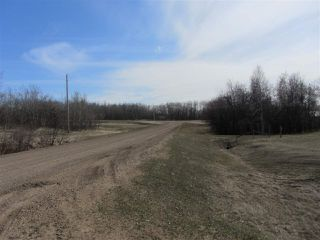 Photo 7: 18 Landing Drive: Rural Sturgeon County House for sale : MLS®# E4015945