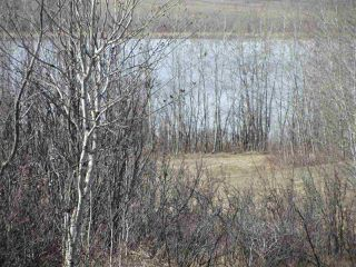 Photo 3: 18 Landing Drive: Rural Sturgeon County House for sale : MLS®# E4015945