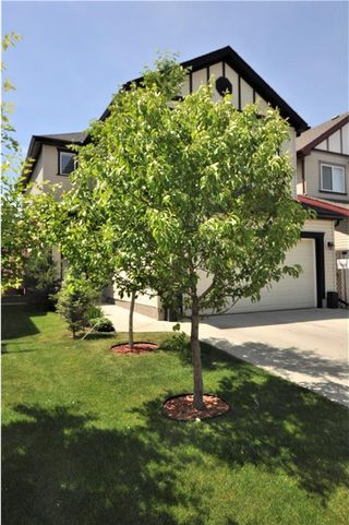 Photo 32: 13 COPPERLEAF Way SE in Calgary: Copperfield House for sale : MLS®# C4113652