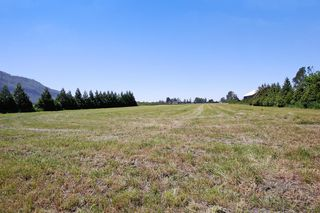 """Photo 25: 719 MARION Road in Abbotsford: Sumas Prairie House for sale in """"ARNOLD"""" : MLS®# R2168445"""