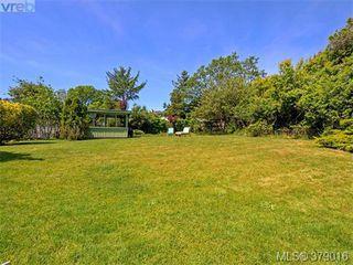 Photo 18: 284 Beach Drive in VICTORIA: OB South Oak Bay Single Family Detached for sale (Oak Bay)  : MLS®# 379016